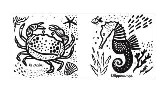 livre bain petite tortue 03 (2)